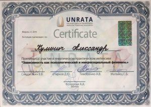Сертификат Кулинич Александр Степанович